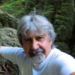 Vas Gyula